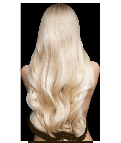 blond-hair-back-trans-free